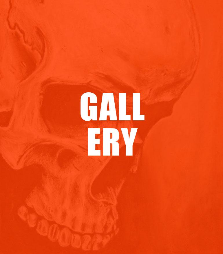 gallery-skull